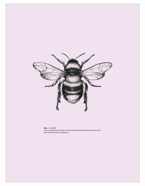 timhenning-bee-I-30x40cm-rose