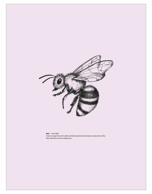 timhenning-bee-II-30x40cm-rose