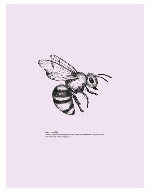 timhenning-bee-III-30x40cm-rose