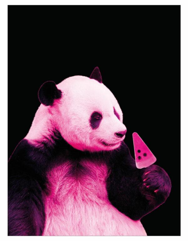 timhenning-panda-pink-30x40cm